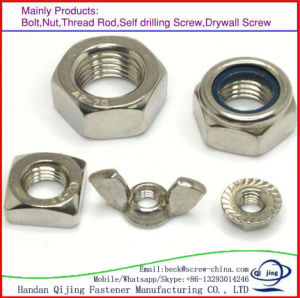 À Tête hexagonale en acier au carbone galvanisé l'écrou DIN DIN934985