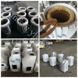 turbina 48V 96V di energia eolica 3kw per uso domestico