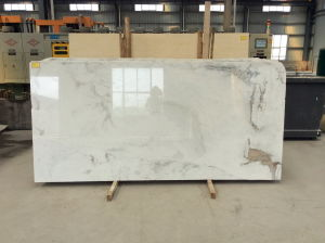 Het Witte Marmer van China Arabecato Venato voor Plakken, Tegels, Countertops (YY - NM003)