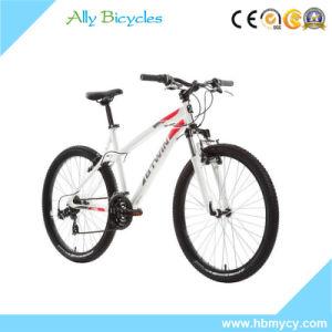Gebirgsfahrrad-/Touring-Sport-Fahrrad des leichten Aluminium-26 /brachte Fahrrad voran