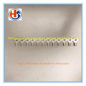 Anillo de suministro de terminales de prensa en frío, cable desnudo de la nariz, la cabeza (HS-OT-00181)