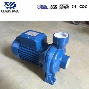 2HP 2inchの農業の潅漑の高品質の電気水ポンプ