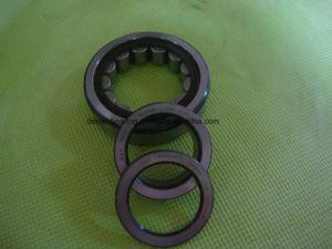 Roulement à rouleaux cylindriques Nu311 ECP avec cage en Nylon