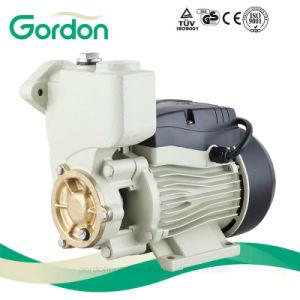 Pompa elettrica nazionale delle acque pulite del collegare di rame per il lavaggio dell'automobile