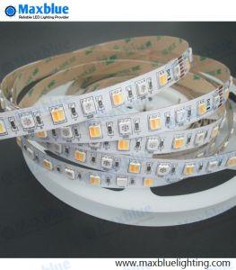 Una striscia registrabile flessibile di 5 colori LED dell'indicatore luminoso di striscia di RGBW/RGB 5050SMD LED RGB/RGBW+CCT