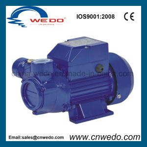 Lq200A elektrische Turbulenz-Trinkwasser-Pumpe (0.55KW/0.75HP)