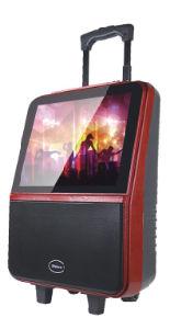 Shincoの専門家TFT LCDスクリーンが付いているスピーカー14インチのトロリー