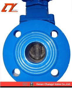 Válvula de compuerta de aguas de HDPE marina para el alcantarillado, agua potable