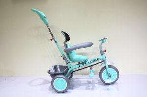 De Fiets van de Kinderen van de goede Kwaliteit met Jonge geitjes de Met drie wielen van de Paraplu