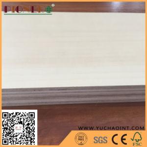 Brich Furnierholz für Möbel mit Bescheinigung des Vergaser-P2