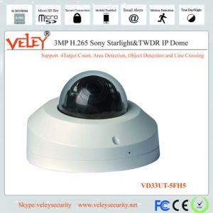 Vídeo en HD de la seguridad de tamaño mini cámara CCTV Cámara IP Web