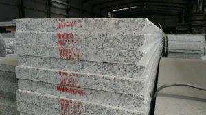 石切り場の所有者の競争価格のニースの灰色カラー磨かれた花こう岩