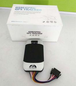 Производитель водонепроницаемый GPS Tracker мотоциклов и автомобилей устройство слежения