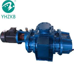 Zjb-300 모형 루트 진공 펌프 또는 공기 펌프