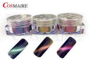 Privé Etiket 3 Poeder van het Pigment van de Spijker van het Oog van de Kat van de Kleur 3D