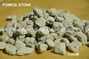 Органических удобрений садоводство сельскохозяйственных удобрений Pumice камня на заводе