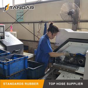 Reparación de crimpado de mangueras hidráulicas métrico Montaje del tubo de reutilizables.