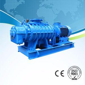 산업 폐기물 물 처리를 위한 회전하는 루트 송풍기