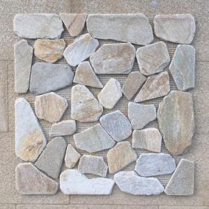Het natuurlijke Mozaïek van de Steen van de Plak van de Lei (smc-SMP125)