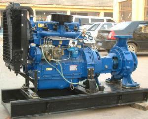 Motor diesel bomba de agua centrífuga para riego agrícola o la lucha contra incendios
