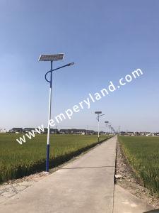 La energía solar 30W Calle luz LED para el Proyecto Aldea