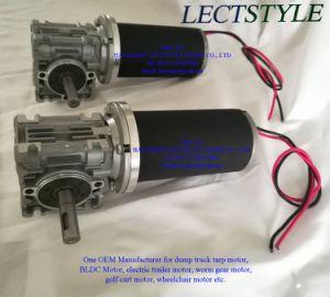 12V ou 24V 50tr/min 100W-350W CC ver le moteur à engrenages