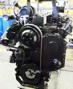 杭打ち機またはトラクターのためのディーゼル機関4BTA3.9-C110を設計するCummins Bシリーズ