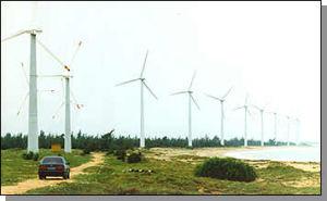 바람 에너지 세대 체계의 잎