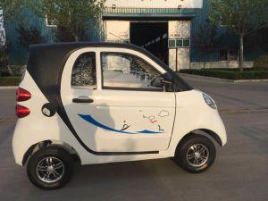 판매를 위한 전기 차량 또는 전차 중국제