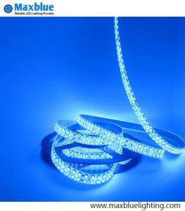 19.2W/M 3528 striscia blu 240LEDs/M di colore IP65 LED