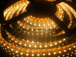 Ce contabilità elettromagnetica LVD RoHS due anni della garanzia LED di indicatore luminoso di striscia bianco caldo flessibile (SMD 3528)