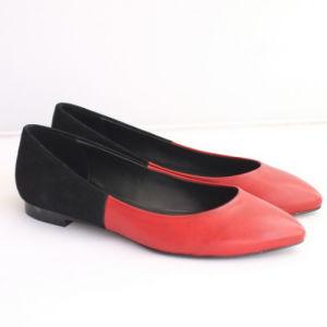 Nouveau style de Ladiesshoes Flats (l'Hcy02-994)