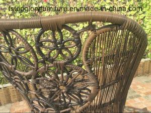 Heiße Verkauf PET Rattan-Weidenstuhl-im Freienmöbel