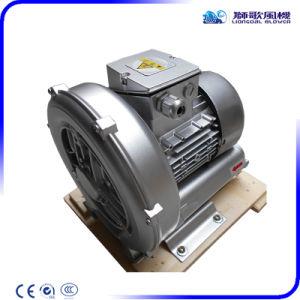 La pompe à vide de Vortex industrielle dans le vide et la tenue de système de levage