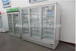 L'ISO vérifié GO Standard vitrine de lumière LED Hot Sale en Chine