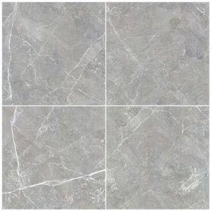 De Rustieke Tegels van de Muur en van de Vloer van het Bouwmateriaal met de Absorptie van Water 0