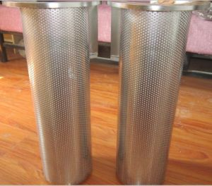 Edelstahl-Meerwasser-Rohr-Korb-Filtereinsatz