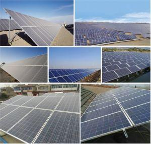 310W mono Module solaire de haute qualité pour le système d'alimentation solaire