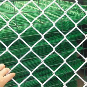 Rete fissa esagonale rivestita della rete metallica del PVC
