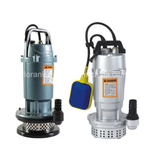 Buon Quality Popular Submersible Water Pump Qdx con CE