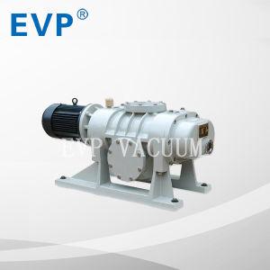 Wurzel-Vakuumpumpe/Vakuumformteil (ZJ-70 (70L/S))