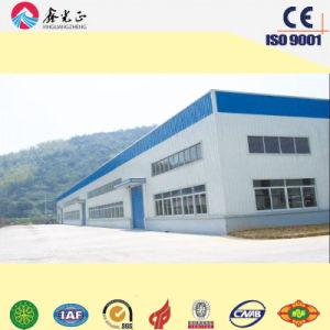 Edificio de la estructura de acero para el taller/el almacén (SSWW-16046)