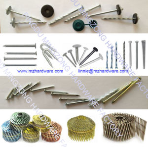 Electro Galvanized Large Flat Head Clout Roofing Nail