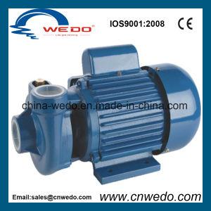 Zentrifugale Wasser-Pumpe mit Messingantreiber (PX-205)