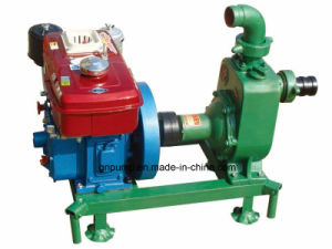 Professionelle selbstansaugende 2 Zoll-Wasser-Pumpe