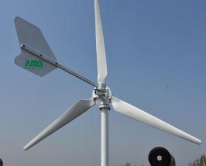 3kw accueil pour l'éolienne sur l'utilisation de la grille