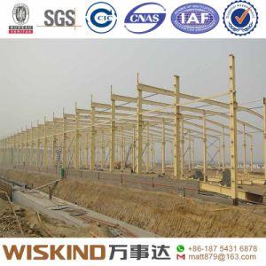 Almacén de la estructura de acero/taller de construcción con una instalación rápida