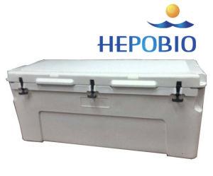 150L大きい容量のRotoによって形成される氷涼しいボックス
