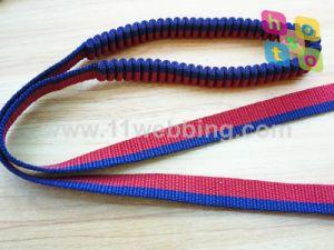 PP Polipropileno elástico correas para mascotas, correa del perro correa del cinturón
