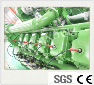 Heißer Verkaufs-auswärts elektrischer Strom-Lebendmasse-Gas-Generator